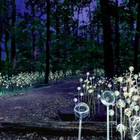 1_Stunning Light Installations by Bruce Munro