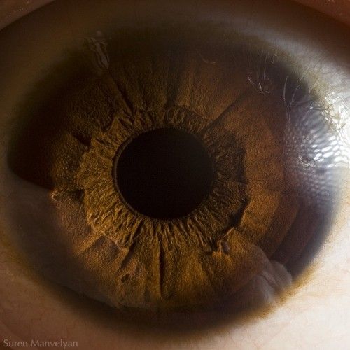 3_Human Eye Beauty