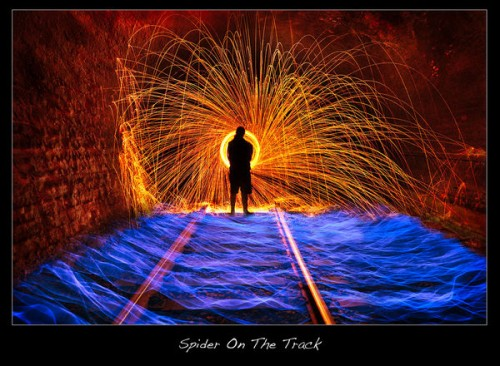 3_Spider On The Track
