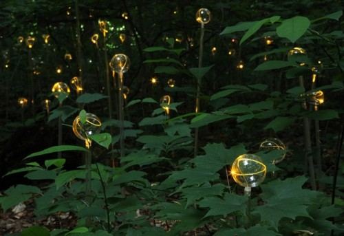 6_Stunning Light Installations by Bruce Munro