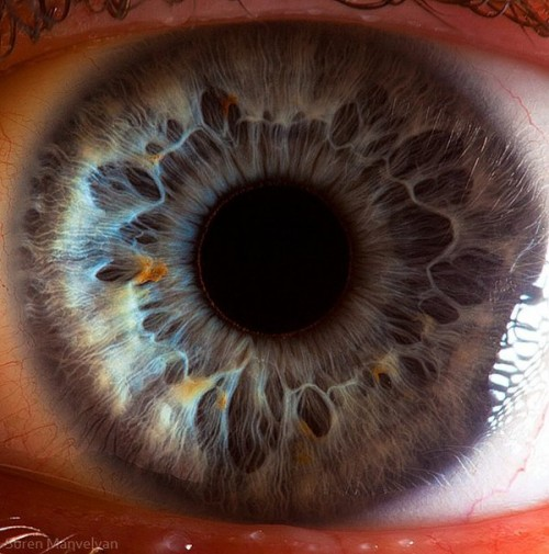 9_Human Eye Beauty
