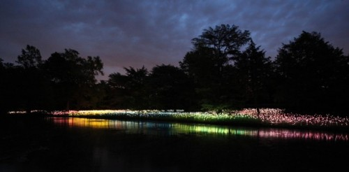9_Stunning Light Installations by Bruce Munro
