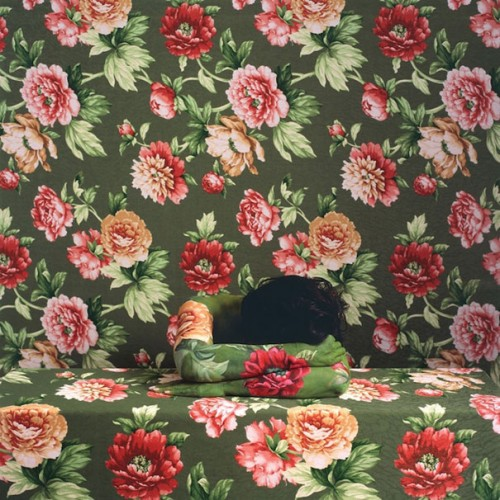 14_Camouflaged Self Portraits by Cecilia Paredes