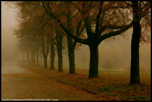10_Autumn Morning