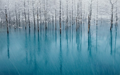 20_Blue Pond &amp; First Snow