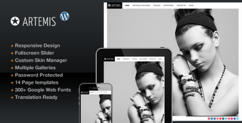 5_Artemis Photography Gallery Portfolio Theme