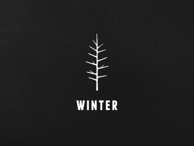 47_Possible WINTER Logo