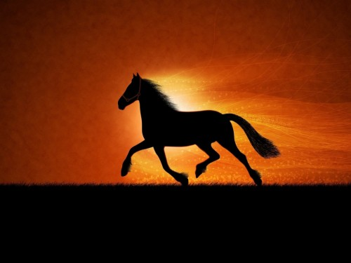 6_Horse Sunrise Art