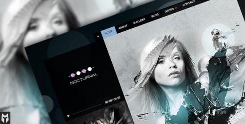 14_Nocturnal - Premier Audio WP Theme
