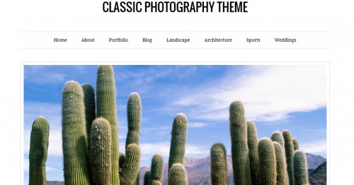 Classic Photography Theme
