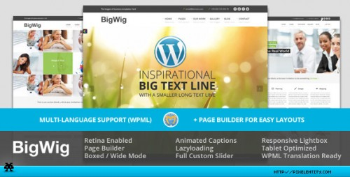 BigWig - Modern Corporate Retina WP Theme