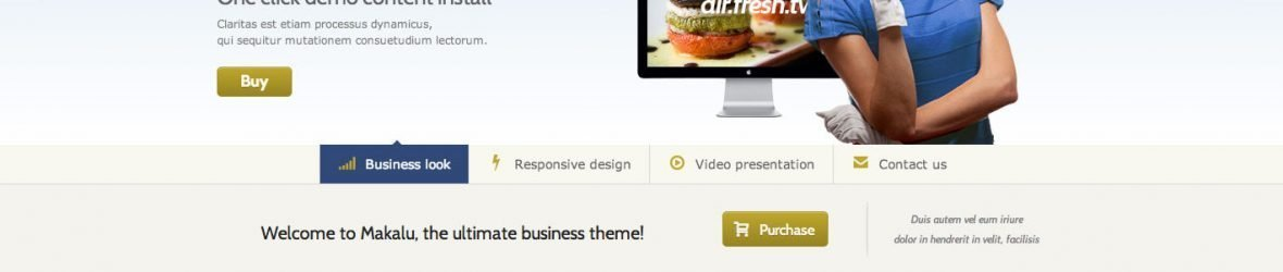 23 Fresh Corporate WordPress Premium Themes