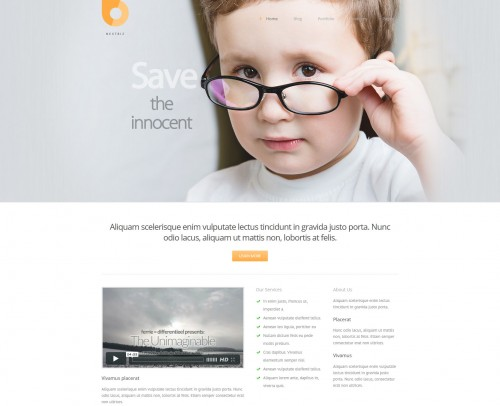 Nextbiz - Responsive WordPress Theme