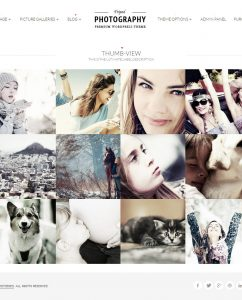 15 Powerful WordPress Photography Themes