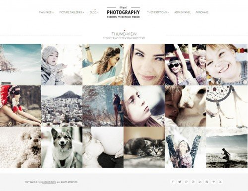 Tripod - Professional WP Photography Theme