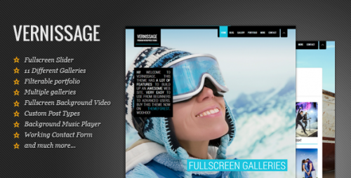 Vernissage: Responsive Photography, Portfolio Theme