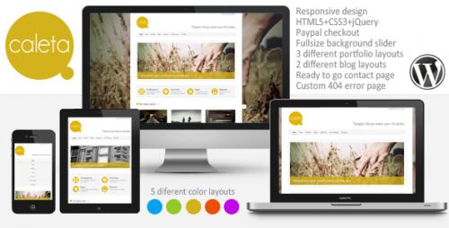 Caleta Responsive Portfolio & Photography Theme