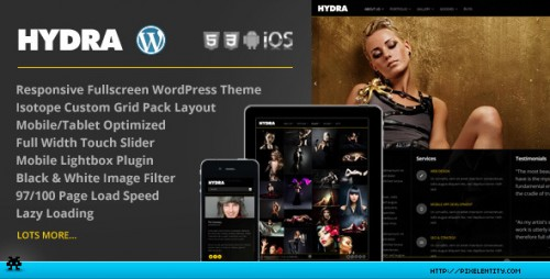 Hydra - Fullscreen Portfolio Grid WP Theme