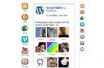 20+ Delightful Free WordPress Facebook Plugins