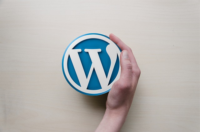 How to Improve Your WordPress Site to Gain More Traffic