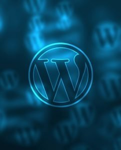 6 Steps to Guarantee the Security of Your WordPress Site